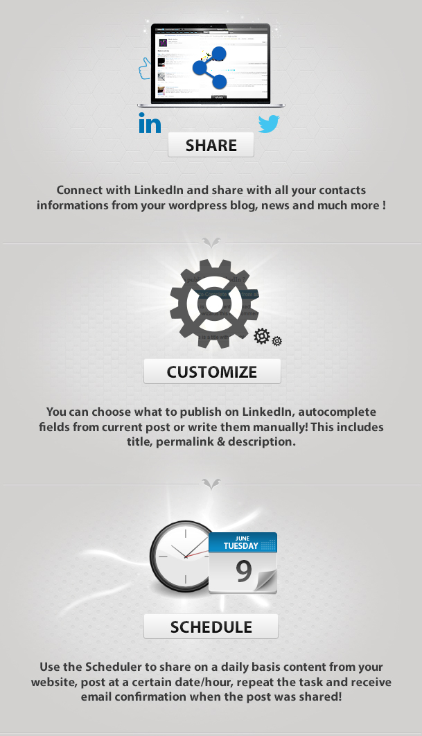 LinkedIn Post Planner/Scheduler - WordPress Plugin 1